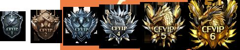 全新的VIP标识