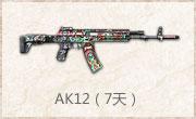 AK12(7天)