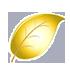 黄金叶×1