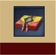 永久服饰箱*1