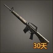 M16 VN DLC(30天)