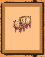铜经验猪*2