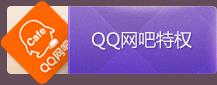 QQ网吧特权