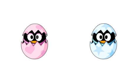 QQ宠物企鹅官网:Q宠宝贝新形象抢鲜看