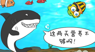 《阿波的日常》三:阿波與鯊魚